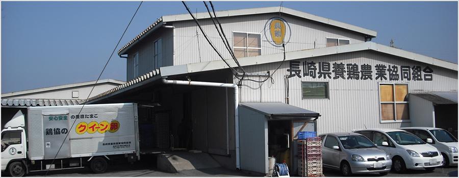 鶏協GPセンター